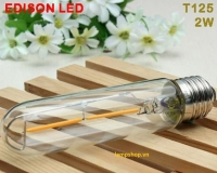 Led edison light T125 - 2w